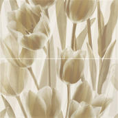 Coraline Panel Tulipany 30X60x2 Coraline / Coral 60 x 60 cm