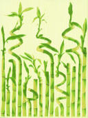 Inca Zefir Inserto B 25x33,3 Inca/Bambus/Bambo 25 x 33,3 cm