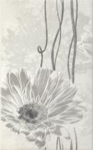 Andante Grys Inserto A 25x40 Andante / Andee 25 x 40 cm