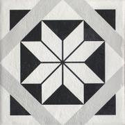 Modern Gres Szkl. Struktura Motyw F 19,8x19,8 Modern 19,8 x 19,8 cm