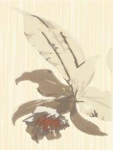Miłek Beige Inserto Kwiat A 25x33,3 25 x 33,3 cm