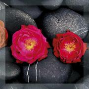 Uniwersalne Inserto Szklane Kwiaty Fazowane 25x25 Dekoracje szklane 25 x 25 cm