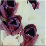 Uniwersalne Inserto Szklane Tulipany 20x20 Dekoracje szklane 20 x 20 cm